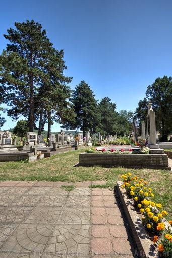 Káptalantóti, felső (keleti) temető - 800x1200 pixel - 1118106 byte