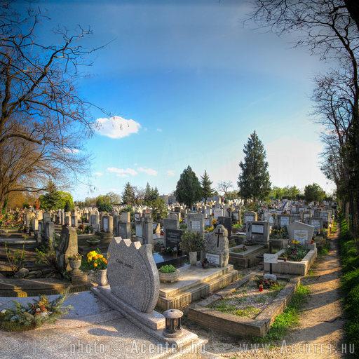 2013. 39. hét: Budafoki temető, Budapest - 1200x1200 pixel - 1739052 byte