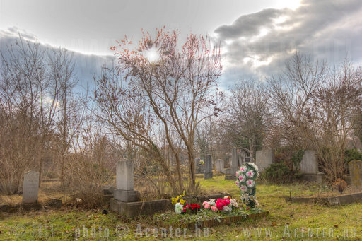 Bogárházi temető - Békéscsaba - 1 - A hét képe 2013. 8. hét - 1200x800 pixel - 1137048 byte