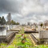 Alsóvégi vagy Vasúti evangélikus temető (Temető sor) - Békéscsaba - 1 - A hét képe 2012.52. hét - 1200x800 pixel - 1046162 byte