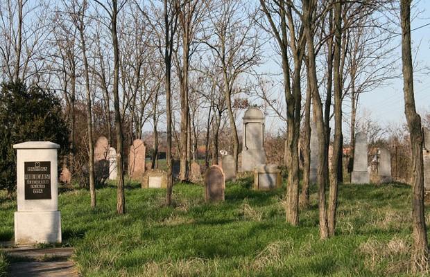 Zsidó temető Békésszentandráson