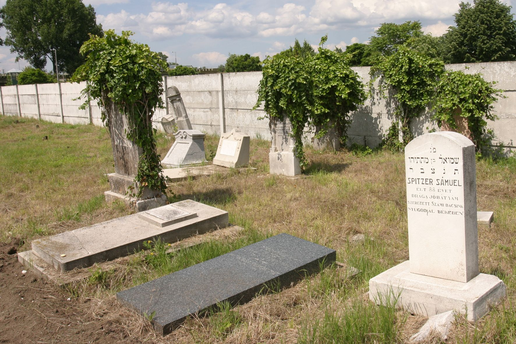 Rákospalotai zsidó temető