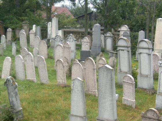 6c2a7b61a9 Nagytétényi zsidó temető - Budapest / Budapest XXII. kerület (1221 ...