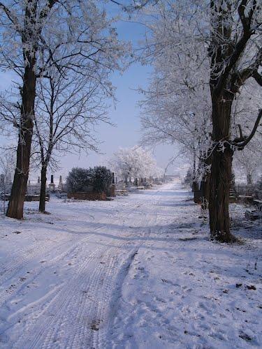 Hajdúböszörmény Tél a Keleti temetőben