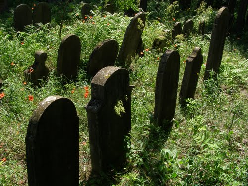 Izraelita temető 5