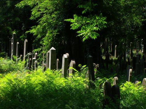 Izraelita temető 2