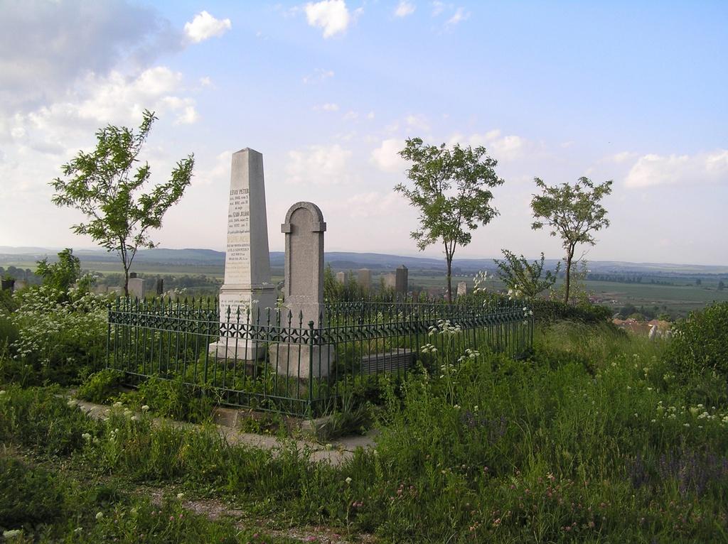 Rég elfeledett sírok pusztuló jelei