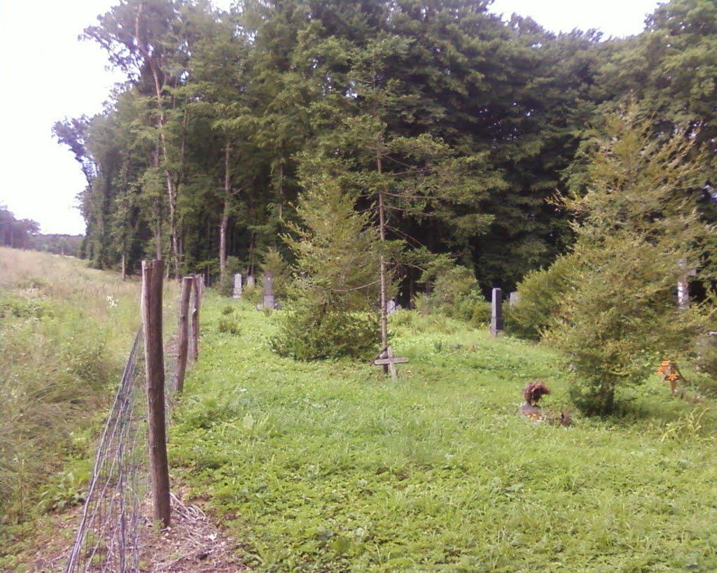 A régi temető