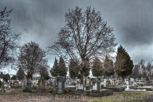 Alsóvégi vagy Vasúti evangélikus temető (Temető sor) - Békéscsaba - 2 - 1200x800 pixel - 601315 byte