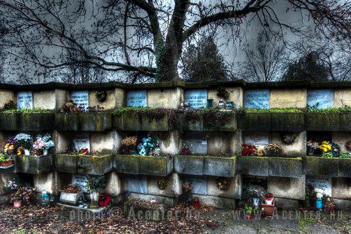 Alsóvégi vagy Vasúti evangélikus temető (Temető sor) - Békéscsaba - 3 - A hét képe 2012. 1. hét - 1200x800 pixel - 720210 byte