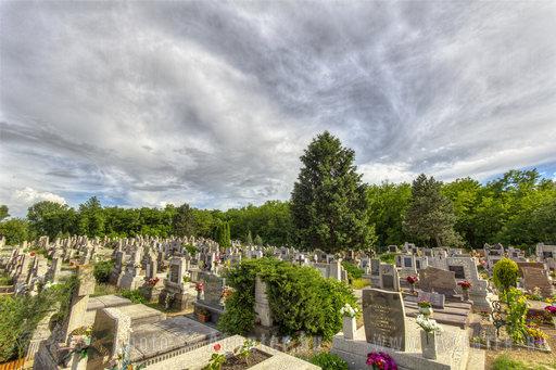 A hét képe, 2013. 13. hét: Lakitelek - temető