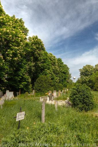 Kondoros, kondorosi temető - 800x1200 pixel - 1240372 byte