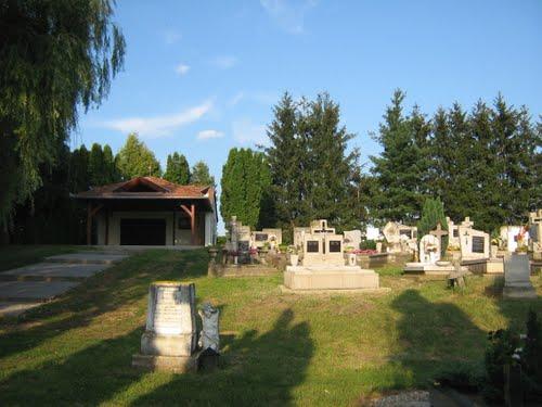 Ságod, temető, keleti látkép