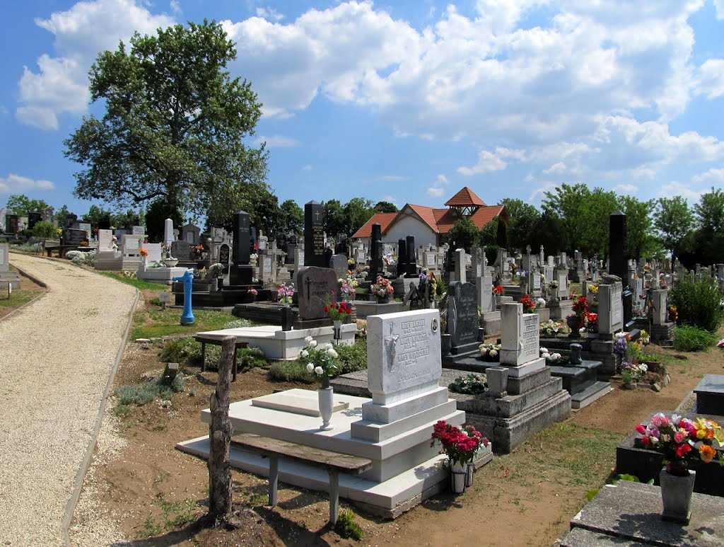 Ócsai temető