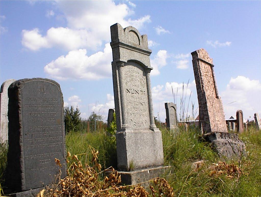 Izraelita síremlékek